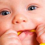 Когда появляются первые зубки